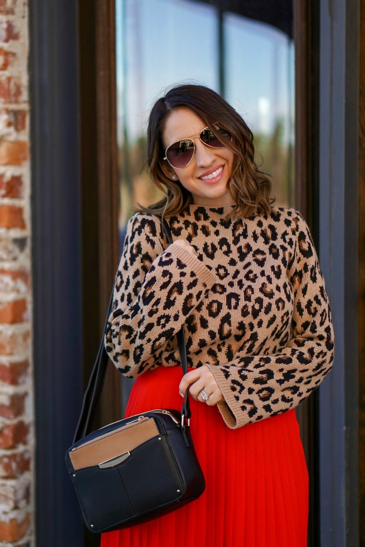 Ann Taylor Sunglasses and Animal Print Sweater and Camera Handbag